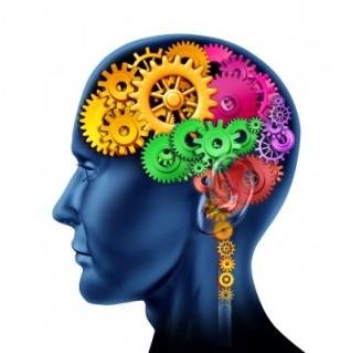 brain123